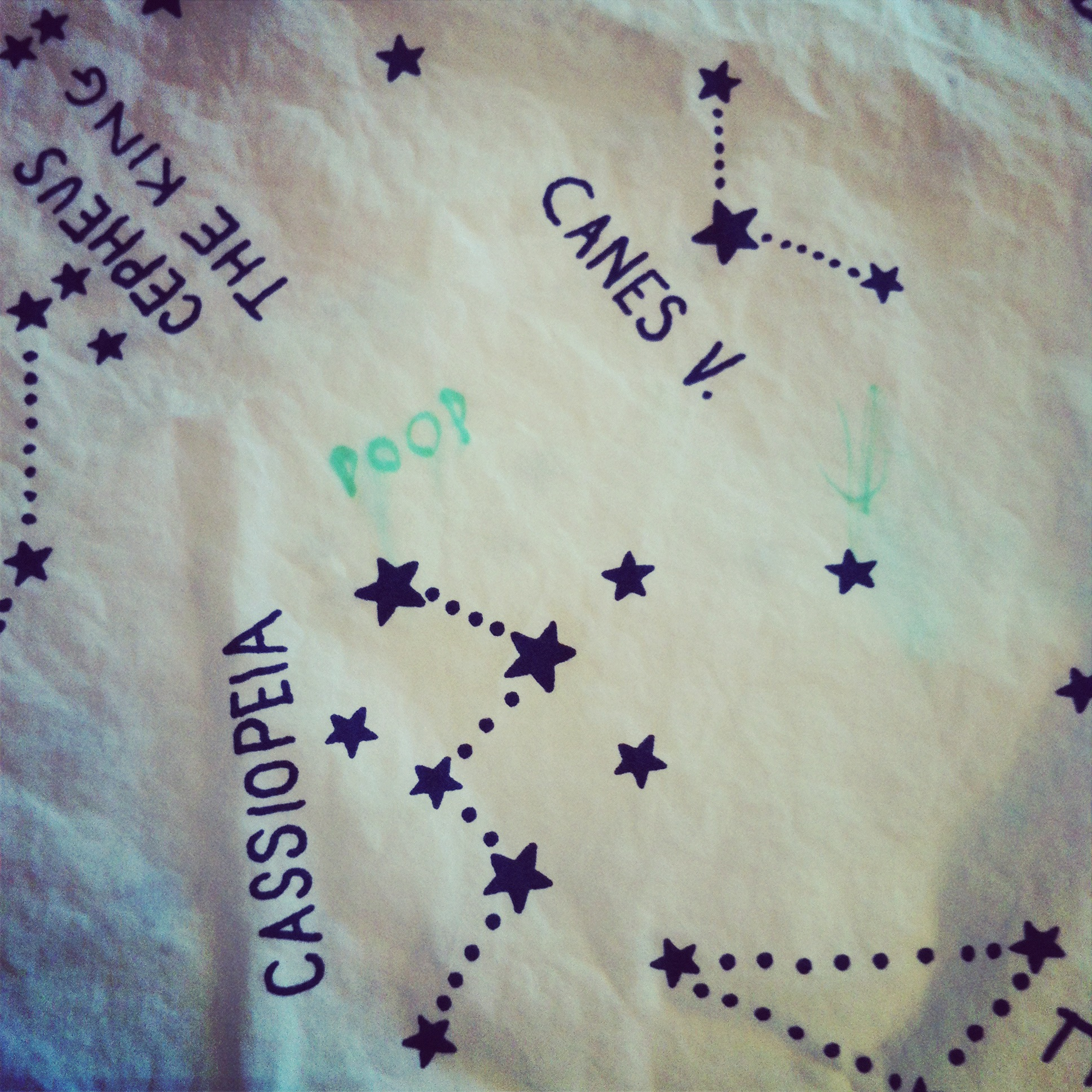 Pottery Barn Constellation sheets